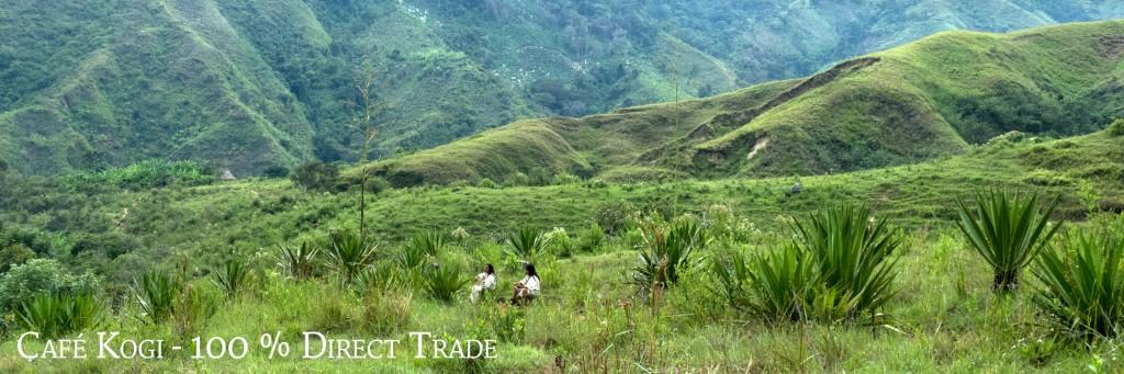 cafe-kogi-direct-trade